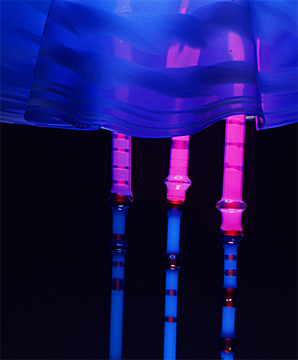 """Jellyfish- close-up"", featured in the virtual neon art gallery, this site displays the neon art, neon sculpture and neon art installations of neon artist Eric Ehlenberger, including modern and contemporary art work as well as a line of neon clocks and wall sconces"